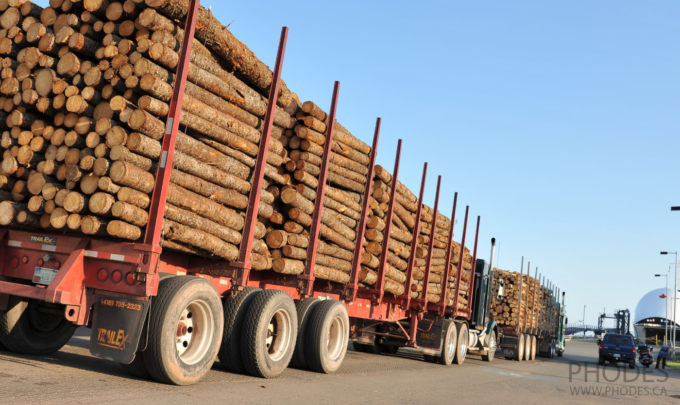Log truck loaded with wood
