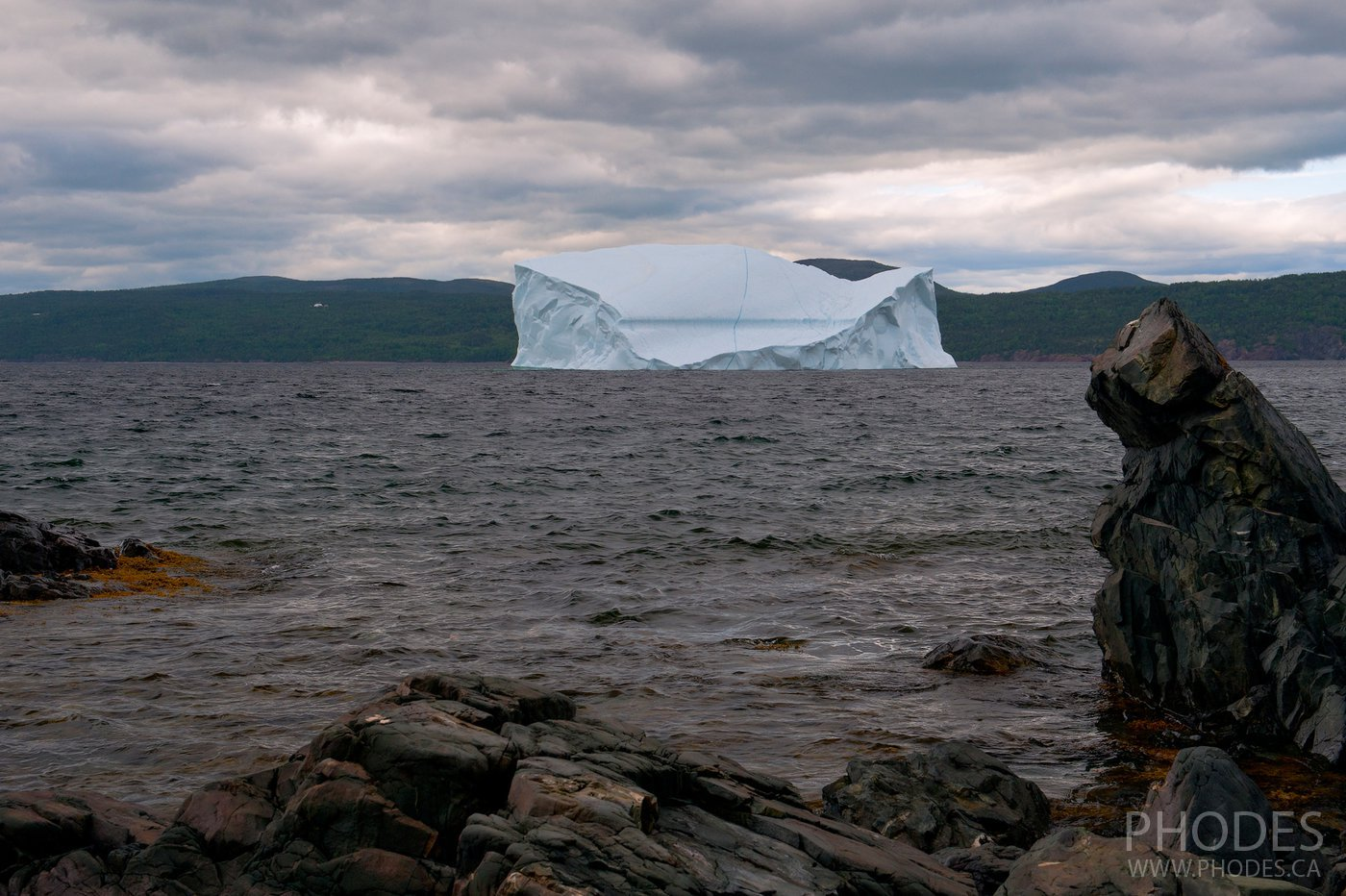 Iceberg and cat cliff in King's Point - Newfoundland