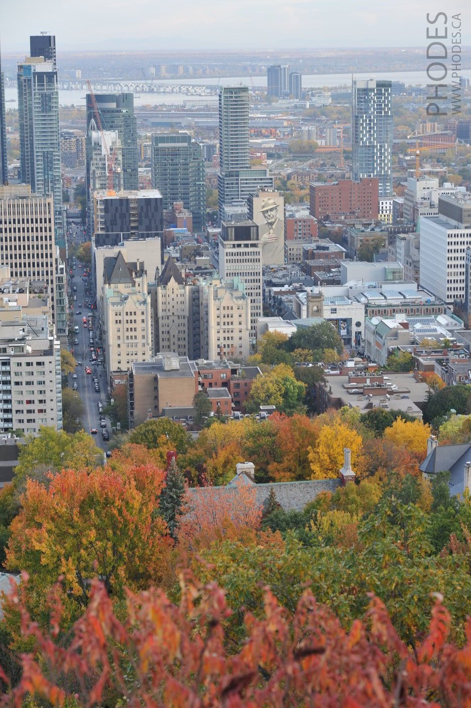 Downtown view from Mount-Royal in Montreal