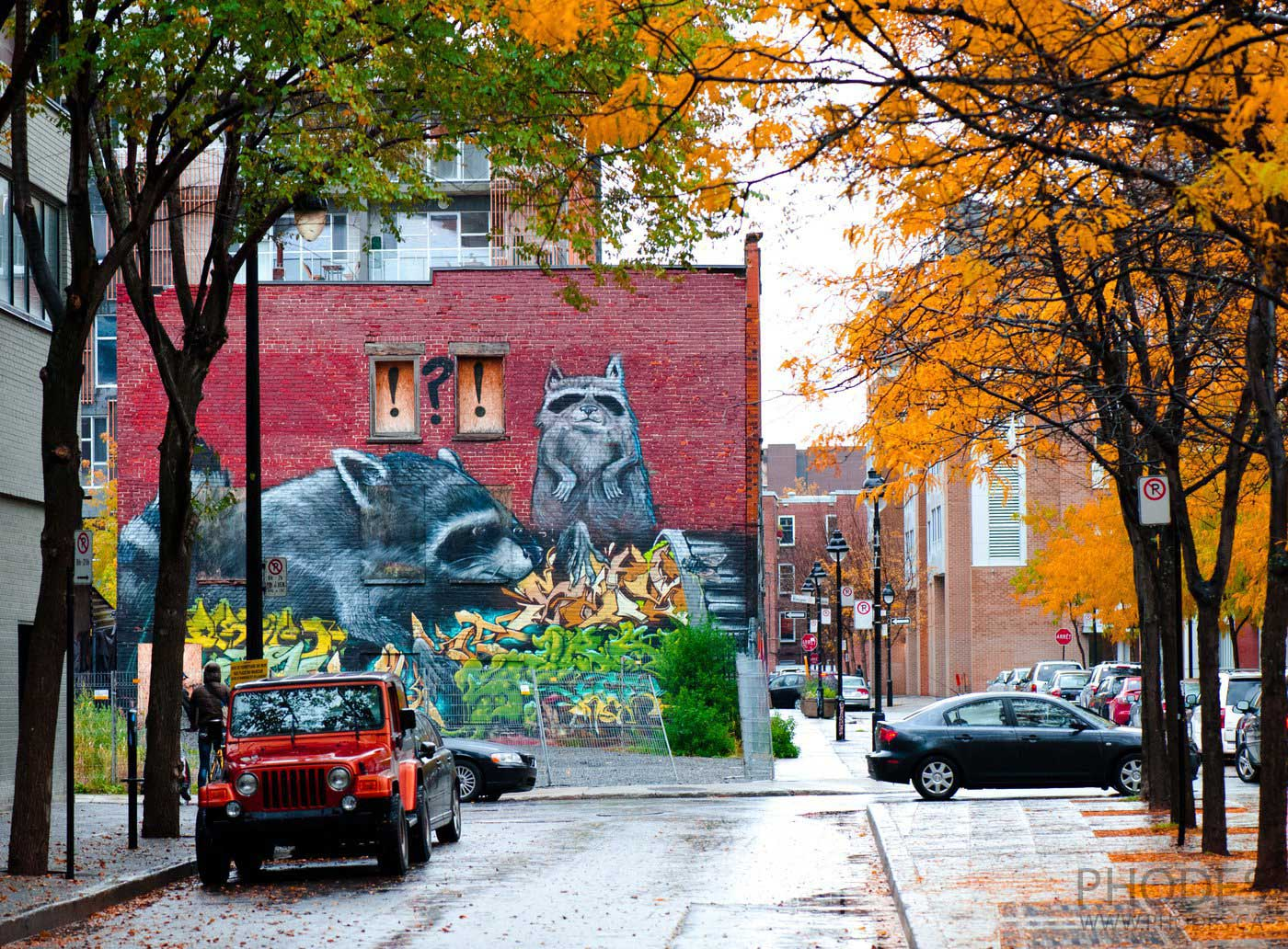 Street with graffiti in fall, Montreal