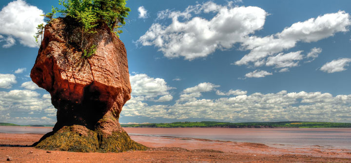 Hopewell Rocks - Flower pot at low tide